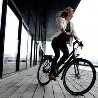 Havn,kajen,molen, cykling, cykel, Batavus